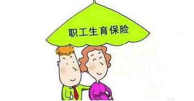 生育保险指南